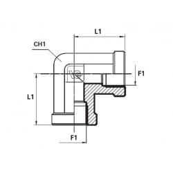 Cot 90 BSP Filet Int .- Filet Int.